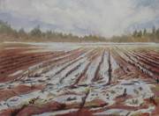 Country Painting Originals - Spring Flood by Jenny Armitage