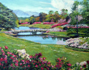 Most Viewed Framed Prints - Spring Flower Park Framed Print by David Lloyd Glover