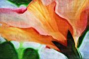 Orange Digital Art Originals - Spring Flowered by Holly Ethan