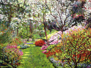 Flower Gardens Posters - Spring Forest Vision Poster by David Lloyd Glover