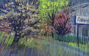 Trees Pastels Originals - Spring Foreward by Donald Maier