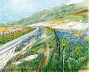 Mountain Road Drawings Framed Prints - Spring has Sprung Framed Print by Jeanette Schumacher