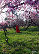 Fantasy Photos - Spring hath sprung 2 by Alana  Schmitt