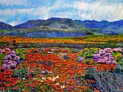 Spring In Namaqualand Print by Michael Durst