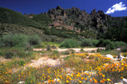 Landscape Greeting Cards Posters - Spring in the Pinnacles Poster by Kathy Yates