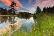 Mountain Lake Prints - Spring lake Print by Evgeni Dinev