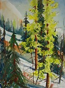 North Cascades Painting Posters - Spring Larch on Slope 03 Poster by Sukey Jacobsen