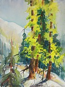 North Cascades Painting Posters - Spring Larch on Slope 04 Poster by Sukey Jacobsen