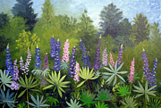 Lupines Paintings - Spring Lupines by Laura Tasheiko
