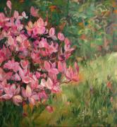 Tree Blossoms Paintings - Spring magnolia by Sonia  Von Walter