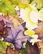 Christina Meeusen Posters - Spring Maple Leaves Poster by Christina Meeusen