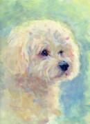 Pastel Dog Paintings - Spring Mickee by Kimberly Santini
