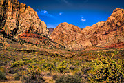Fossilized Art - Spring Mountain Ranch in Red Rock Canyon II by David Patterson