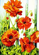 Orange Poppy Paintings - Spring Poppies by Janis Grau