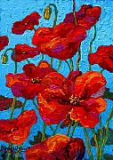 Fall Paintings - Spring Poppies by Marion Rose