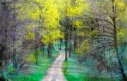 Dirt Roads Mixed Media - Spring rains by Gina Signore