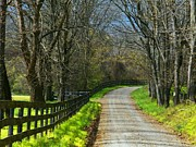 Northern Virginia Photos - Spring Road by Joyce  Kimble Smith
