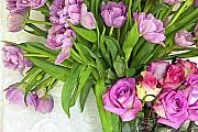 Pinks Posters - Spring Roses and Tulips Poster by Margaret Hood