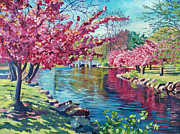 Cherry Blossoms Painting Originals - Spring Soliloquy by David Lloyd Glover
