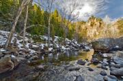 Pine Trees Art - Spring Time on the Saint Vrain River by James Steele
