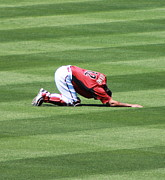 Baseball Fields Photos - Spring Training 12-4-2 by Pamela Walrath