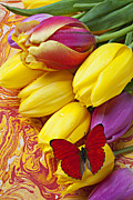 Flora Tapestries Textiles Posters - Spring tulips Poster by Garry Gay