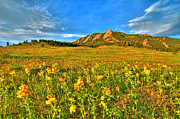 Cu Boulder Framed Prints - Spring Vision Framed Print by Scott Mahon