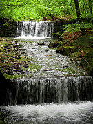 Branch Hill Pond Prints - Spring Waterfall Print by Mariola Bitner