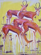 Springbok Posters - Springbok waiting Poster by Cecile Smit