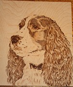 Trial Pyrography - Springer Profile by Angel Abbs-Portice