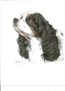Bill Hubbard Framed Prints - Springer Spaniel Framed Print by Therese A Kraemer