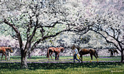 Thoroughbred Paintings - Springtime at Keeneland by Thomas Allen Pauly