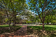 Lafayette Digital Art Prints - Springtime in Lafayette Square Print by Jim Moore