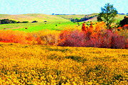 Bulls Digital Art Metal Prints - Springtime In The Golden Hills . 7D12402 Metal Print by Wingsdomain Art and Photography