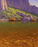 Springtime On The Salt River Print by Cody DeLong