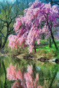 Tree Blossoms Digital Art Prints - Springtime Reflection Print by Anthony Caruso