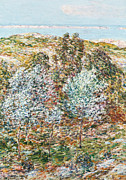 Beach Paintings - Springtime Vision by Childe Hassam