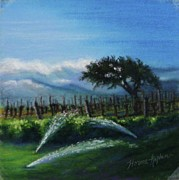 Rolling Hills Vinyards Prints - Sprinklers at Pre Dawn Print by Denise Horne-Kaplan