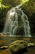 Gsmnp Prints - Spruce Flats Falls Print by Ulrich Burkhalter