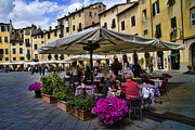 Cafe Photos - Square Amphitheater in Lucca Italy by David Smith