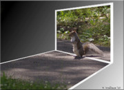 Sfx Photo Prints - Squirrel World Print by Brian Wallace