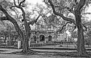 St. Charles Art - St. Charles Ave. Mansion monochrome by Steve Harrington