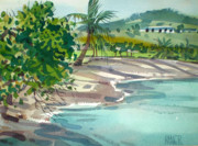 Coconut Paintings - St. Croix Beach by Donald Maier