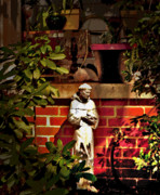 Francis Photo Originals - St Francis of the garden hose by David A Brown