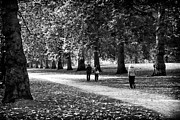 Great Britain Art - St. James Park Walk by John Rizzuto