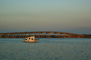 Palatka Photos - St. Johns River at Palatka by Kathi Shotwell