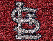 Cardnals Posters - St. Louis Cardinals Bottle Cap Mosaic Poster by Paul Van Scott