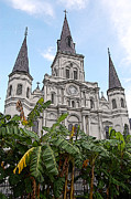 French Quarter Digital Art - St Louis Cathedral Rising Above Palms Jackson Square New Orleans Poster Edges Digital Art by Shawn OBrien