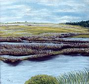 Water Pastels - St. Marks Marshland by Jan Amiss
