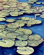 Florida Flowers Pastels Prints - St. Marks Waterlilies Print by Jan Amiss